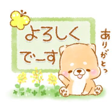 「初夏 いやしばいぬ 16 / 24」